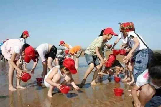 北戴河黄金海岸露营