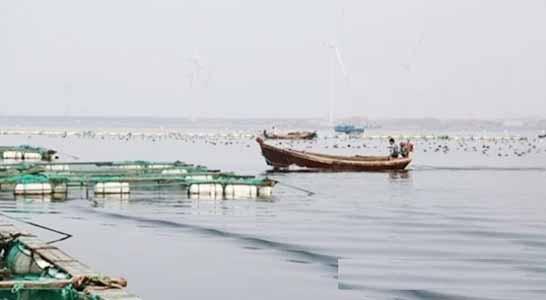 北戴河坐船出海游艇