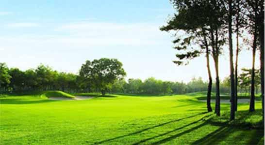 南戴河森林国际高尔夫俱乐部