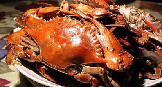 北戴河吃螃蟹