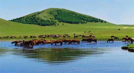 秦皇岛北戴河到张北坝上草原旅游2日游